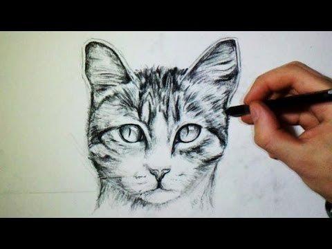 design-cat